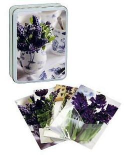 Country Blue Posies Tinned Notecards