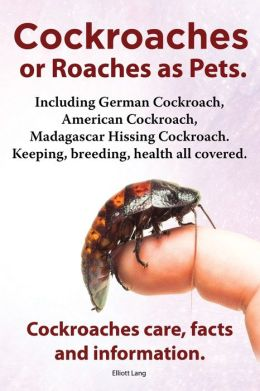 Cockroaches as Pets. Cockroaches Care, Facts and Information. Including German Cockroach, American Cockroach, Madagascar Hissing Cockroach. Keeping, B