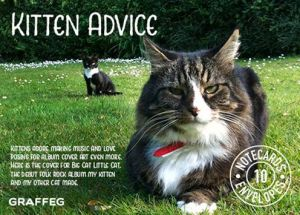 Kitten Advice notecards: 10 cards and envelopes