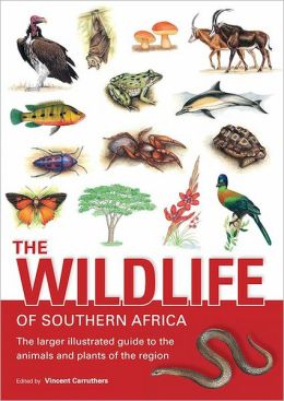 The Wildlife of Southern Africa (PagePerfect NOOK Book)