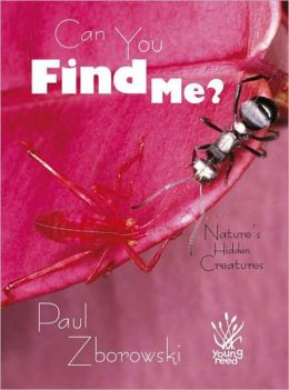 Can You Find Me?: Nature's Hidden Creatures
