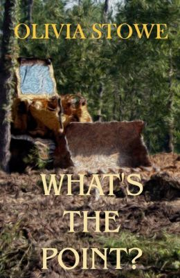 What's the Point: Charlotte Diamond Mysteries 5