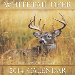 2014 Whitetail Deer Wall Calendar