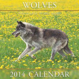 2014 Wolves Wall Calendar