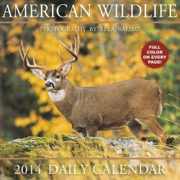2014 American Wildlife Box Calendar