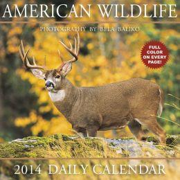 2014 American Wildlife Box Calendar