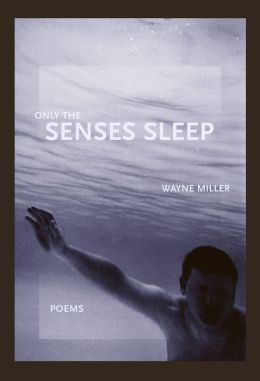 Only the Senses Sleep