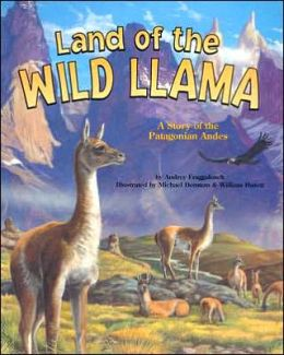 Land of the Wild Llama: A Story of the Patagonian Andes
