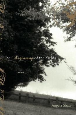 Beginning of the Fields