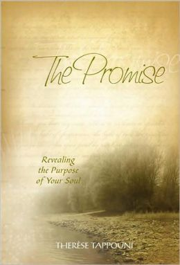 The Promise: Revealing the Purpose of Your Soul