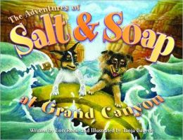 Adventures of Salt and Soap at Grand Canyon