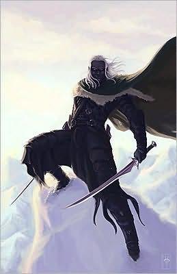 Forgotten Realms Omnibus 2: Books 4-6 (Graphic Novel)