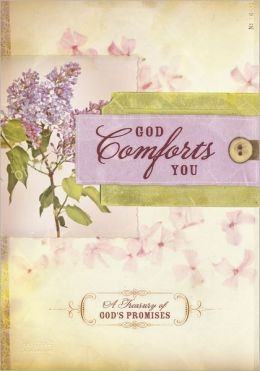 God Comforts You Promise Book