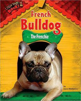 French Bulldog: The Frenchie