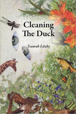 Cleaning The Duck