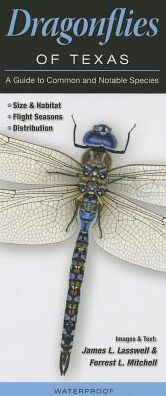Dragonflies of Texas: A Guide to Common and Notable Species