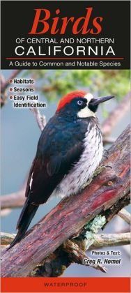 Birds of Central and Northern California: A Guide to Common and Notable Species