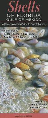 Shells of Florida/Gulf of Mexico: A Beachcomber's Guide to Coastal Areas