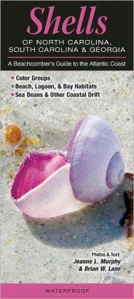 Shells of North Carolina, South Carolina and Georgia: A Beachcomber's Guide to the Atlantic Coast