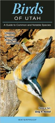 Birds of Utah: A Guide to Common and Notable Species