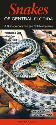 Snakes of Central Florida: A Guide to Common and Notable Species