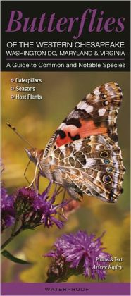 Butterflies of the Western Chesapeake - Washington, DC, Maryland, Virginia: A Guide to Common and Notable Species