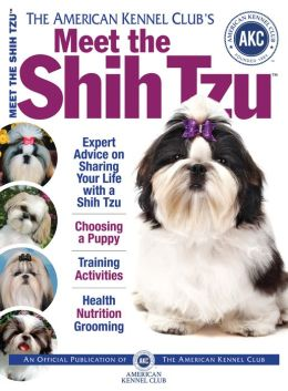 Meet the Shih Tzu