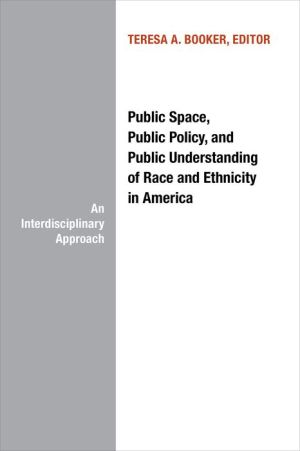 Public Space, Public Policy and Public Understanding of Race and Ethnicity in America: An Interdisciplinary Approach