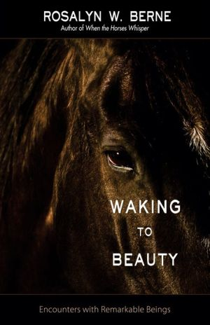 Waking to Beauty: Encounters with Remarkable Beings