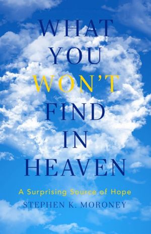 What You WON'T Find in Heaven: A Surprising Source of Hope