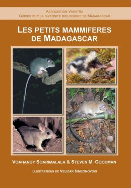 Les Petits Mammiferes de Madagascar