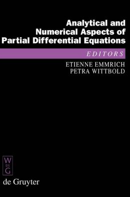 Analytical and Numerical Aspects of Partial Differential Equations : Notes of a Lecture Series