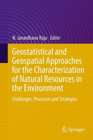 Geostatistical and Geospatial Approaches for the Characterization of Natural Resources in the Environment: Challenges, Processes and Strategies