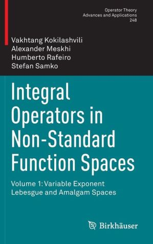 Integral Operators in Non-Standard Function Spaces: Volume 1: Variable Exponent Lebesgue and Amalgam Spaces
