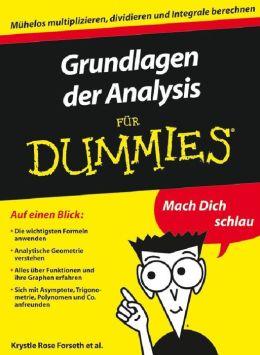 Grundlagen der Analysis fur Dummies