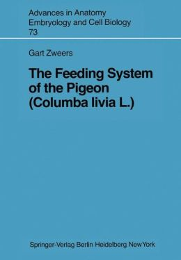 The Feeding System of the Pigeon (Columba livia L.)
