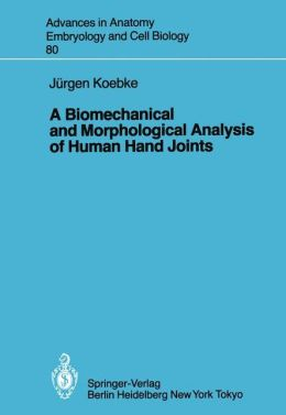 A Biomechanical and Morphological Analysis of Human Hand Joints