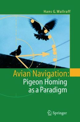 Avian Navigation: Pigeon Homing as a Paradigm