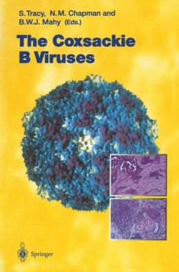 Coxsackie B Viruses