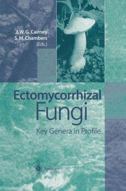 Ectomycorrhizal Fungi: Key Genera in Profile