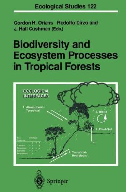 Biodiversity and Ecosystem Processes in Tropical Forests