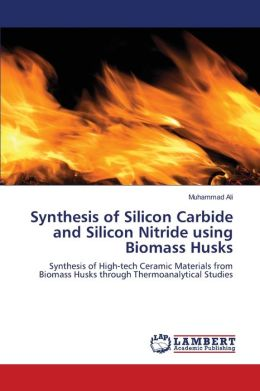 Synthesis of Silicon Carbide and Silicon Nitride using Biomass Husks