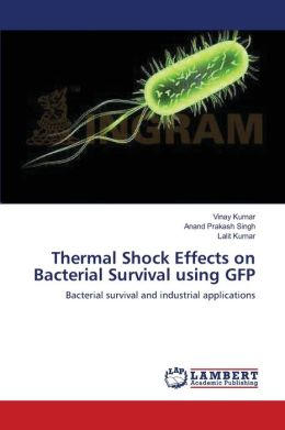 Thermal Shock Effects on Bacterial Survival using GFP