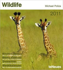 2011 Wildlife Weekly Postcard Calendar