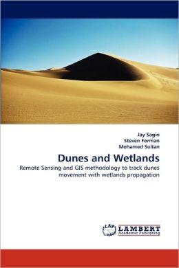 Dunes And Wetlands