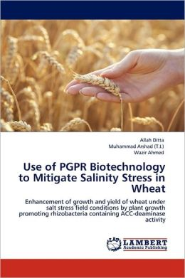 Use Of Pgpr Biotechnology To Mitigate Salinity Stress In Wheat