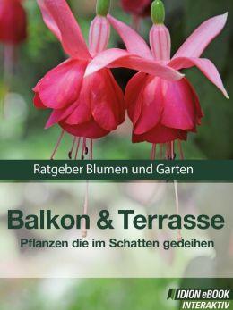 Balkon & Terasse - Pflanzen die im Schatten gedeihen: Ratgeber Blumen und Garten