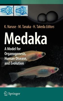 Medaka: A Model for Organogenesis, Human Disease, and Evolution