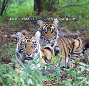 Face to Face: Tiger Families of Ranthambhore