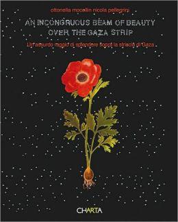 Ottonella Mocellin & Nicola Pellegrini: An Incongruous Beam of Beauty Over the Gaza Strip